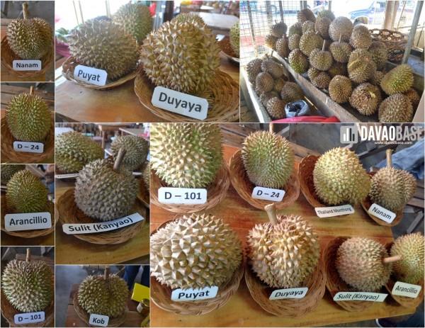 Rosario's Durian