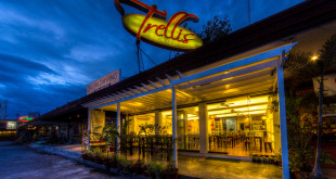 A bigger, better Trellis N' Vines opens on October 8 in Autoville Compound along Torres Street.