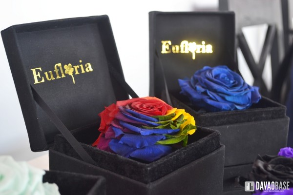 eufloria-boxed-flowers