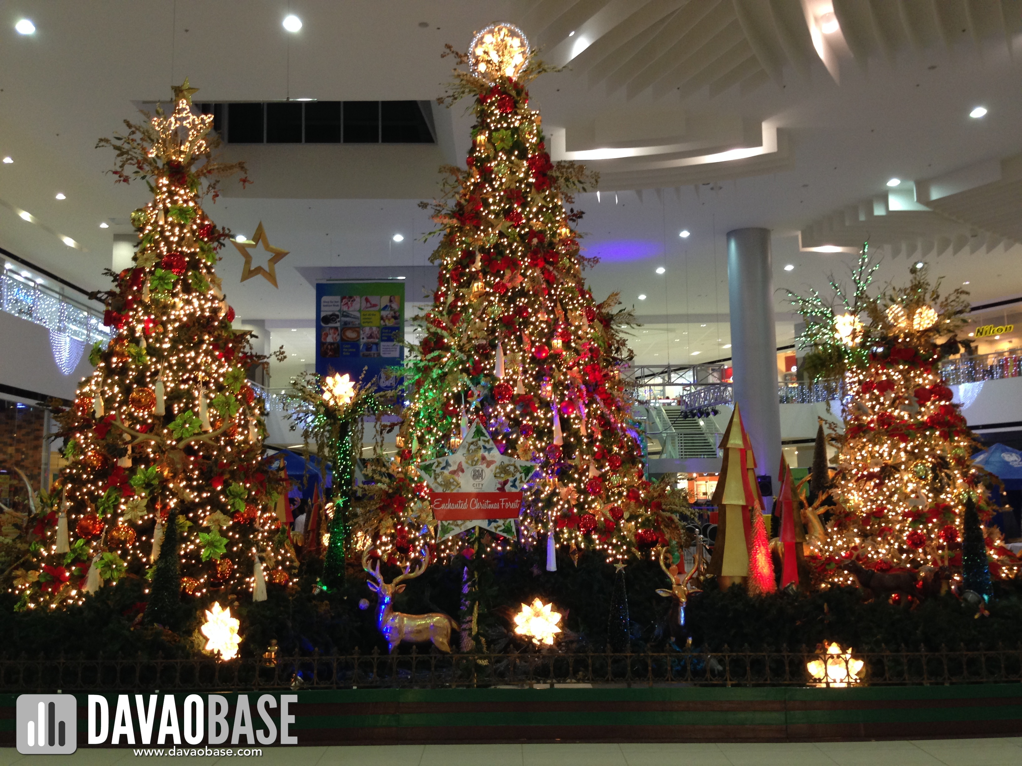 Spotted awesome christmas trees in davao davaobase Christmas tree decorating ideas philippines